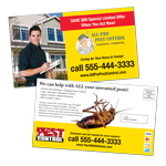 pest-control-eddm-post-card
